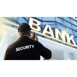 Curso de Especialización en Seguridad en Entidades de Crédito