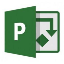 Microsoft Proyect